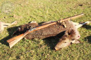Elejtő: Németh Balázs, távolság: 85 m, fegyver: PEdersoli .54 Flintlock Jäger, Töltet: 100 grain 2Fg Swiss + 300 grain REAL