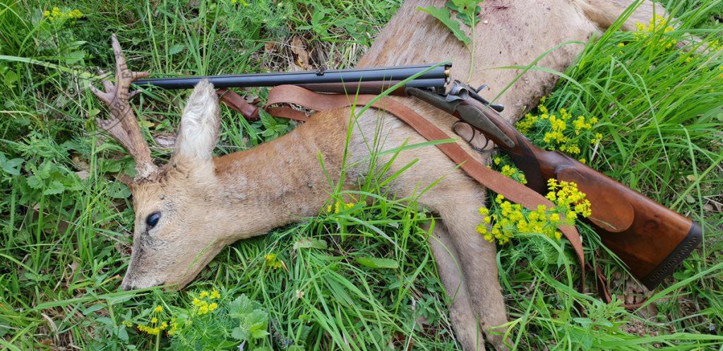 A 11 mm Mauser tette a dolgát: gyorsan, a lehető legkisebb szenvedéssel ölt.